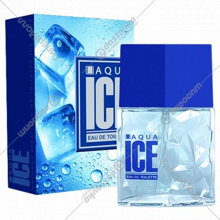 Туалетная вода мужская «Ice Aqua» 100 мл.