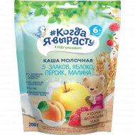 Каша молочная «Когда я вырасту» яблоко-персик-малина, 200 г.