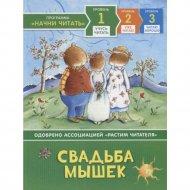 Книга «Свадьба мышек» учусь читать.
