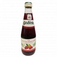 Сок «Galicia» яблочно-вишневый, 300 мл.