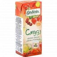 Сок с мякотью «Galicia» смузи, 0.2 л.