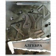 Тетрадь предметная «Серебряная серия-Алгебра» клетка, 48 листов.