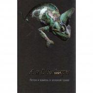 Книга «Петля и камень в зеленой траве» Вайнер Г.А.