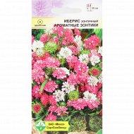 Семена цветов «Иберис» зонтичный, 0.5 г.