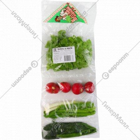 Набор зелени «Салат-редис-укроп-лук» 140 г.