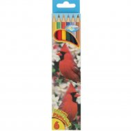 Набор цветных карандашей «Zoo» 80167, 6 шт.