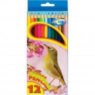 Набор цветных карандашей «Zoo» 80169, 12 шт.