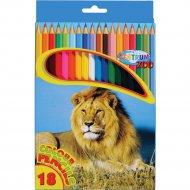Набор цветных карандашей «Zoo» 80170, 18 шт.