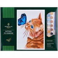 Картина по номерам «Кот и бабочка».