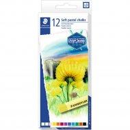 Набор цветных мелков «Staedtler» Design Journey, 2430-C12, 12 цветов