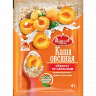 Каша овсяная «Вышний город» с абрикосом со сливками, 41 г.
