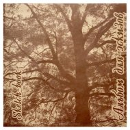 Альбом для эскизов «Дерево» крафт, 40 л.