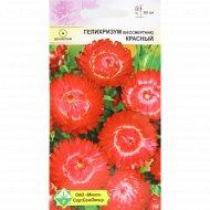 Семена гелихризума прицветникового «Красный» 0.2 г.