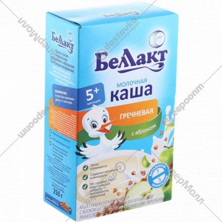 Каша гречневая молочная «Беллакт» с яблоком 250 г.
