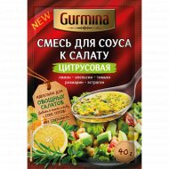 Смесь для соуса к салату «Gurmina» цитрусовая, 40 г.