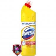 Чистящее средство «Domestos» Лимонная свежесть, 750 мл