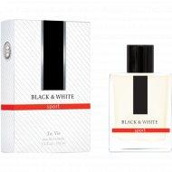 Мужская туалетная вода «La Vie» Black & White 100 мл
