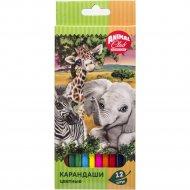 Набор карандашей цветных «Animal Planet» 12 цветов.