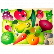 Магнитная игра «Во саду ли, в огороде» 26 элементов.