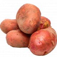 Картофель красный ранний, 1кг, фасовка 1.1-1.2 кг