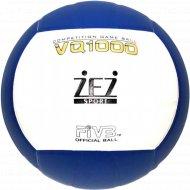 Мяч волейбольный, VQ1000.