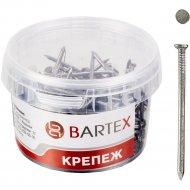 Гвозди «Bartex» 2.5х50 мм, 300г.