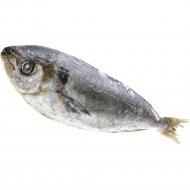 Рыба свежемороженая «Саворин» 1 кг., фасовка 0.8-1 кг