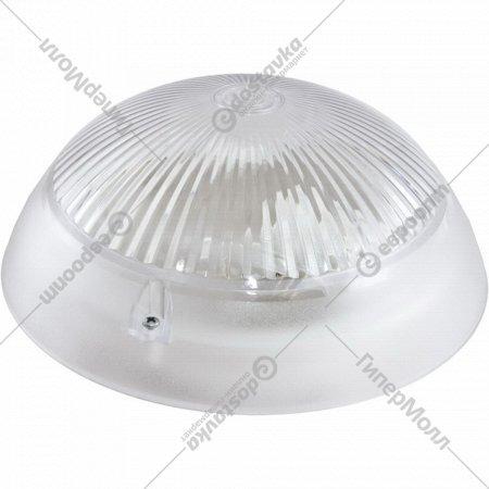 Светильник «TDM» НПП 03-100-010.11 У3