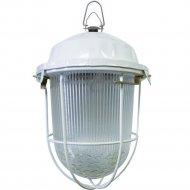 Светильник «TDM» НСП 02-100-002.01 У2