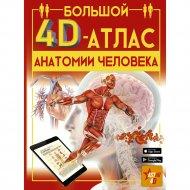 «Большой 4D - Атлас анатомии человека» Спектор А.