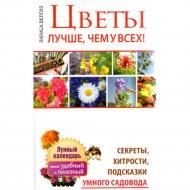 Книга «Цветы: лучше, чем у всех» Вергиз Л.