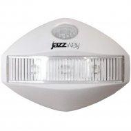 Светильник светодиодный «Jazzway» TS1-L03