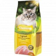 Корм для кошек «Chammy» с курицей, 1.9 кг.