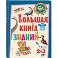 «Большая книга знаний: для детей 2-3 лет» Буланова С., Мазаник Т.