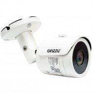 IP-камера «Ginzzu» HIB-5302A