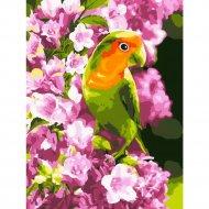 Картина по номерам «Lori» Весенний попугайчик, Кпн-014, 28х38 см