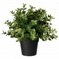 Искусственное растение «Фейка» душица в горшке, 9 см.