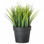 Искусственное растение «Фейка» в горшке.