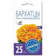 Бархатцы «Антигуа» оранжевые карлики, 7 шт.