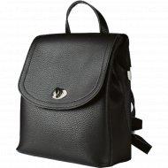 Рюкзак «Galanteya» 10220, 0с1437к45
