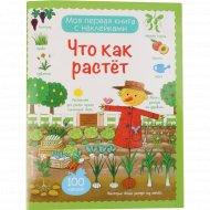 Книги «Что как растет» с наклейками.