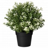 Искусственное растение «Фейка» в горшке, 9 см.