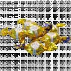 Конфеты «Золотая лилия» 1 кг
