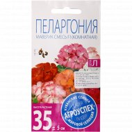 Пеларгония «Маверик» смесь, 4 шт.