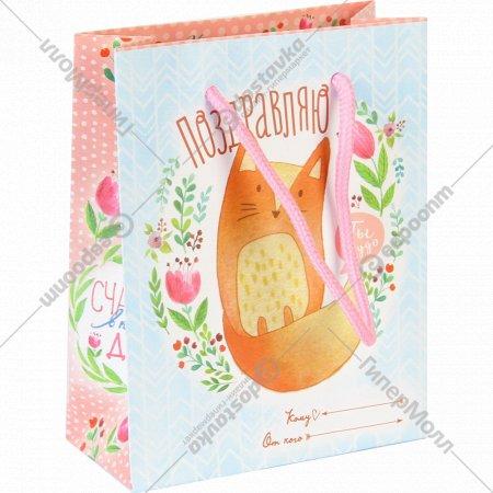 Пакет для подарков «Ты чудо» 11286105, 12x15x5,5 см.
