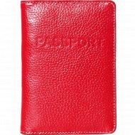 Обложка на паспорт «Galanteya» 20819, 0с1045к45