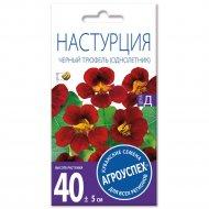 Настурция «Черный трюфель» низкорослая, 2 г.