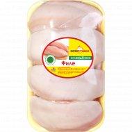 Филе цыплёнка-бройлера «Витконпродукт» охлажденное 1 к., фасовка 0.9-1.1 кг