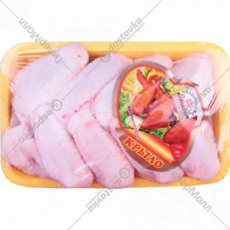 Крыло цыпленка-бройлера «Витконпродукт» охлажденное 1 к., фасовка 0.5-0.9 кг
