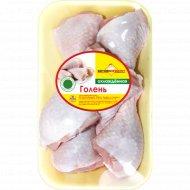 Голень цыпленка-бройлера «Витконпродукт» охлажденная 1 к., фасовка 0.38-0.52 кг